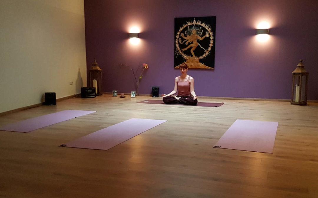 Yoga-Workshops und Privatstunden